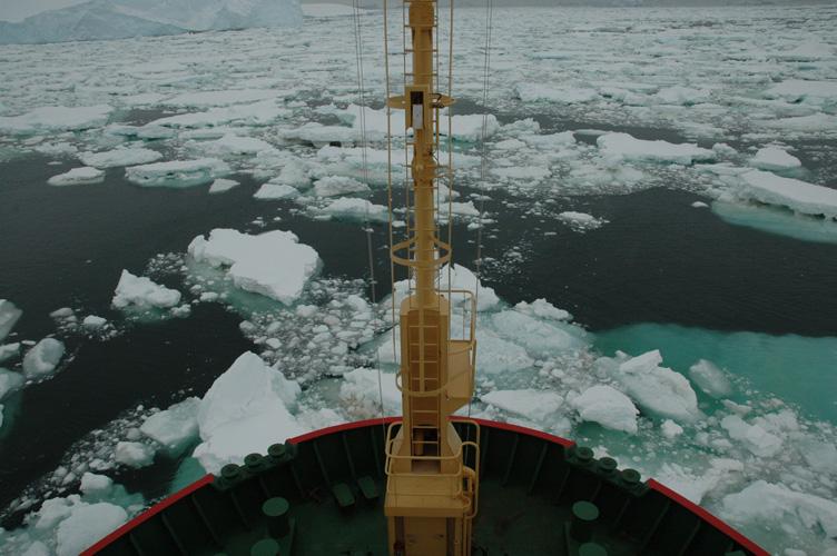 Drifting pack ice awaits its doom