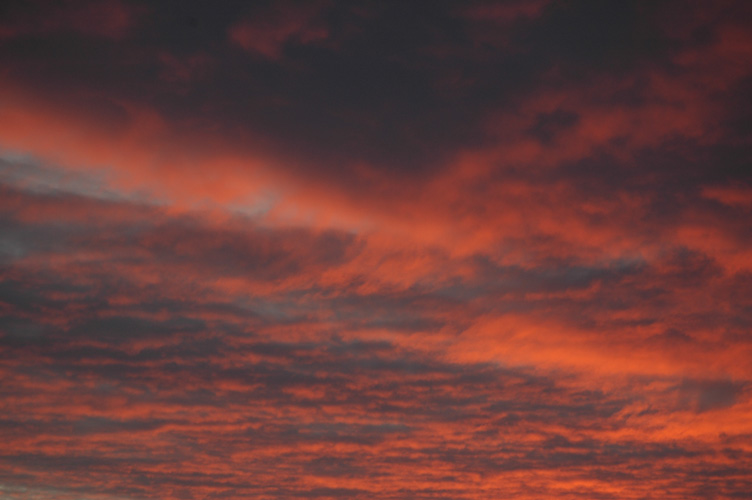 Salmon pink and grey clouds