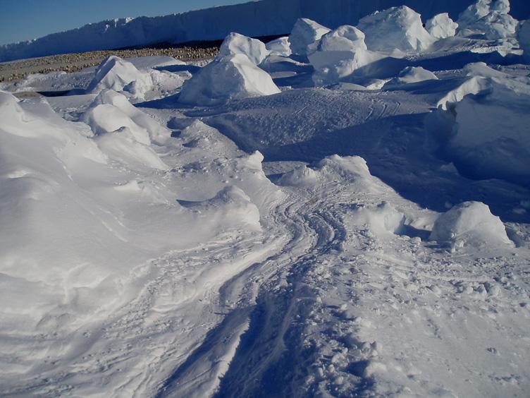 Penguin slalom track